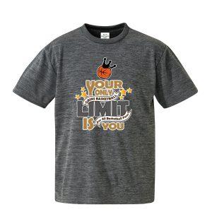 dryt-limit-hg